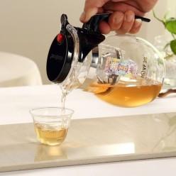 Чайник заварочный Гунфу, Kamjove TP-777, 600 мл