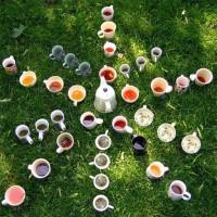 5 веских причин пойти заварить чай